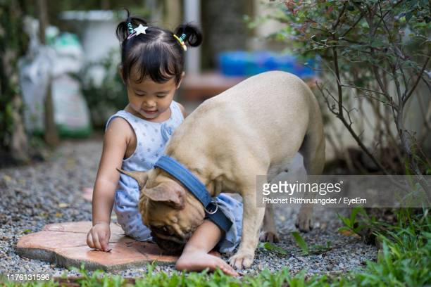 full length of girl with dog sitting by plants - phichet ritthiruangdet stock photos and pictures