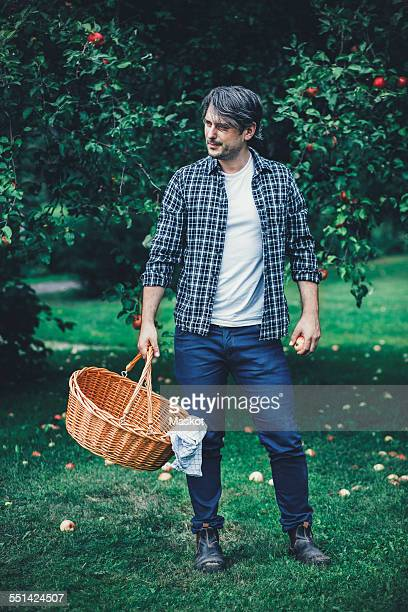 Full length of man carrying wicker basket at apple orchard