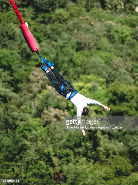 Full Length Of Man Enjoying Bungee Jumping Over Forest