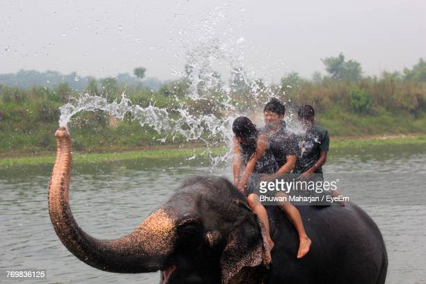 Full Length Of People Sitting On Elephant In River