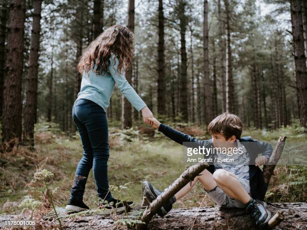 full length of sister assisting brother in forest - assistance stock pictures, royalty-free photos & images