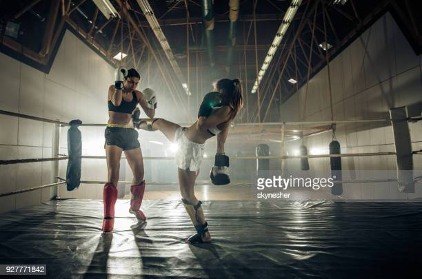 full length of two athletic women on a kickboxing match in a ring. - muay thai imagens e fotografias de stock