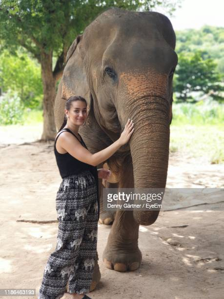 full length of woman by elephant in zoo - safari animals stock photos and pictures