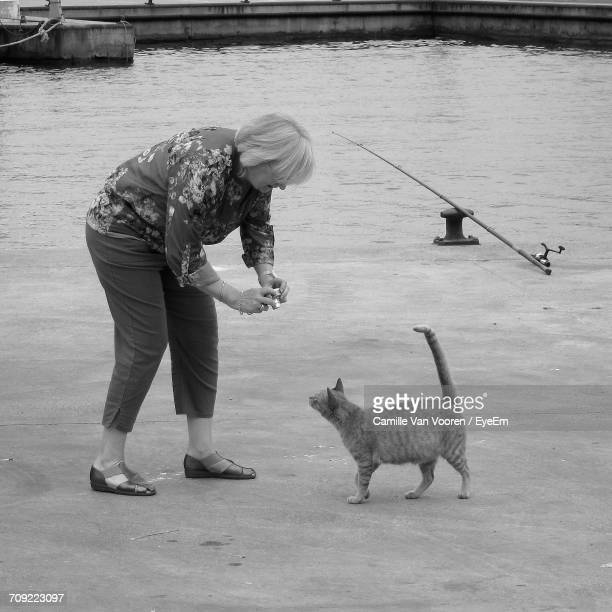 Full Length Of Woman Photographing Cat On Pier At Harbor