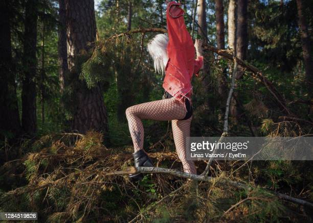 full length of woman standing in forest - fishnet stockings stock pictures, royalty-free photos & images