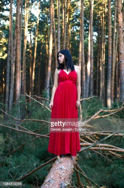full length of woman wearing red dress standing on fallen tree in forest - evening gown stock pictures, royalty-free photos & images