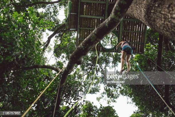 full length of woman zip lining at forest - bortes imagens e fotografias de stock
