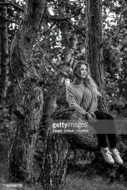 full length of young woman sitting on tree at forest - sergei stock pictures, royalty-free photos & images