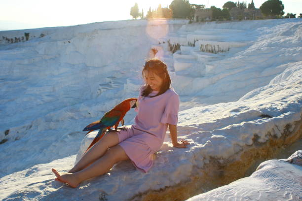 Full Length Of Young Woman Sitting With Bird On Snow Covered Land During Sunset