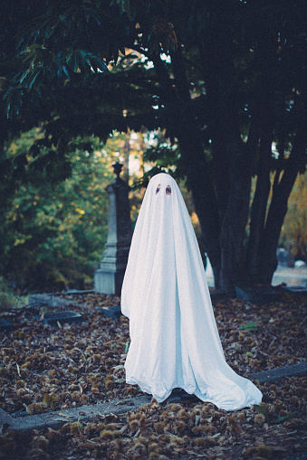 Full length portrait of boy wearing ghost costume while standing on field at cemetery during Halloween - gettyimageskorea