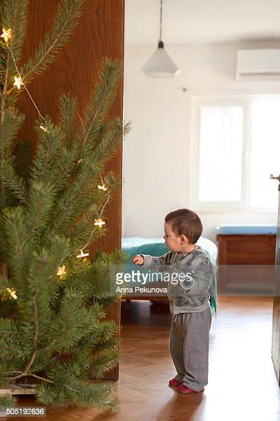 full length portrait of toddler boy touching non-decorated christmas tree - grab stock pictures, royalty-free photos & images