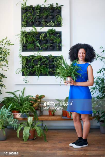 full length portrait of young mixed race female working in a creative team in a sustainable office environment holding plant. - sleeveless dress stock pictures, royalty-free photos & images