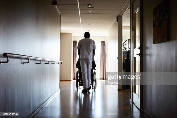 full length rear view of male nurse pushing senior man on wheelchair at hospital corridor - nursing home stock pictures, royalty-free photos & images