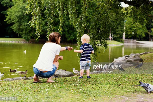 Full length rear view of mother and son feeding birds at pond