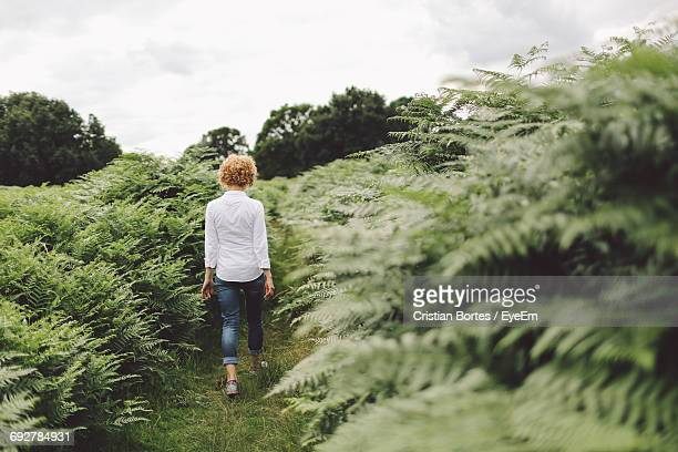 Full Length Rear View Of Woman Walking Amidst Plants Against Sky
