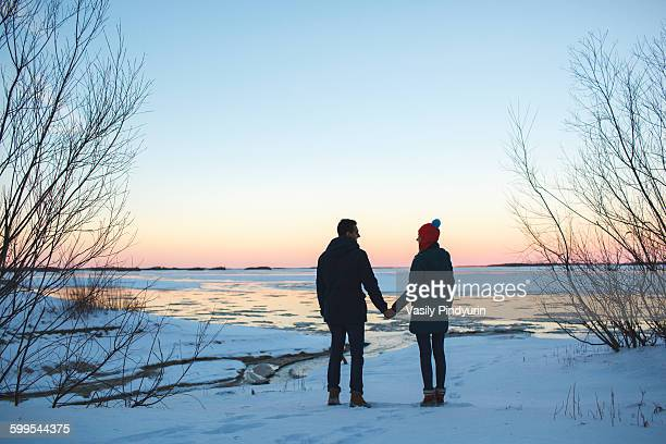 Full length rear view of young couple holding hands on snowy field