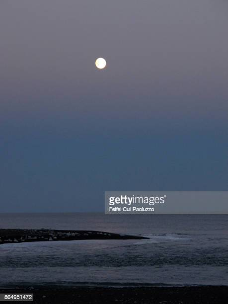 full moon at seaside of jokulsarlon, east coast of iceland - austurland stock-fotos und bilder
