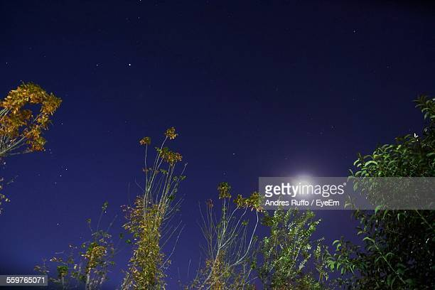 full moon in sky - andres ruffo stock pictures, royalty-free photos & images