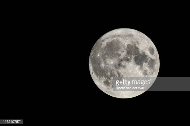 """full moon in the dark september night with clearly visible moon surface - """"sjoerd van der wal"""" stock pictures, royalty-free photos & images"""