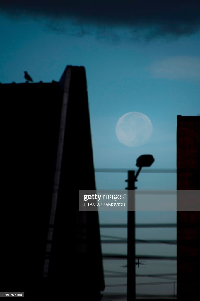 A full moon is pictured on February 5, 2014 early morning in Bogota, Colombia. AFP PHOTO/Eitan Abramovich. /
