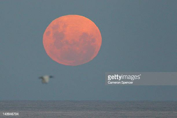 A full moon is seen rising over the Pacific Ocean on May 6 2012 in Sydney Australia The full moon known as a 'Super Moon' occurs annually when the...