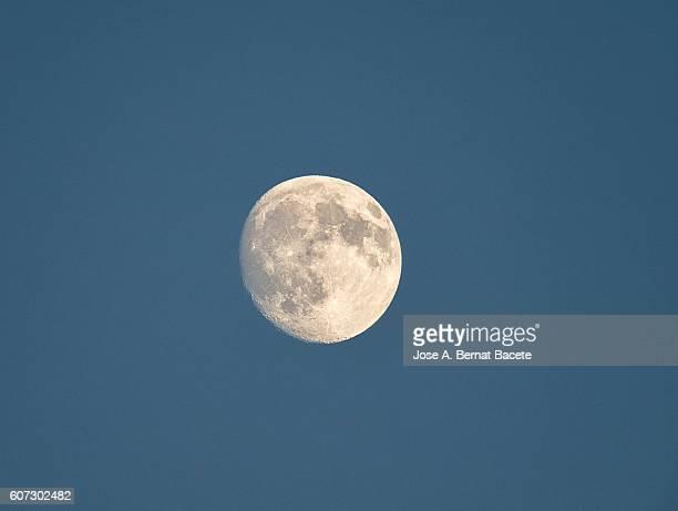 Full moon on a dark blue sky to the dusk.