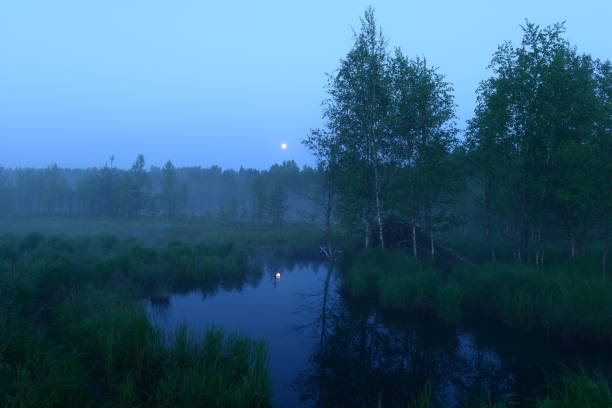 Full Moon On A White Night By The Forest River