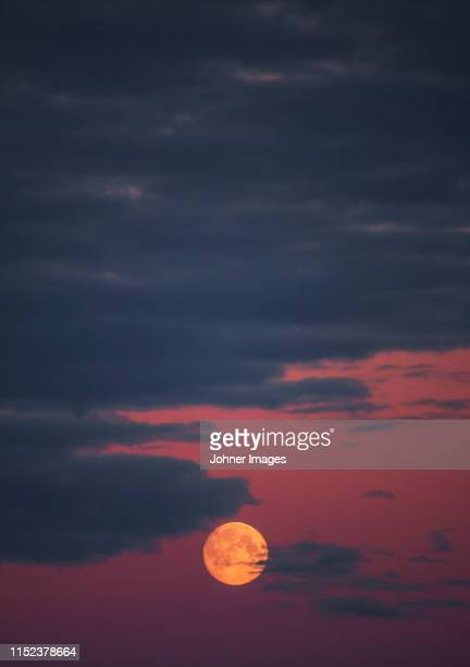full moon on sky - pink moon stock pictures, royalty-free photos & images