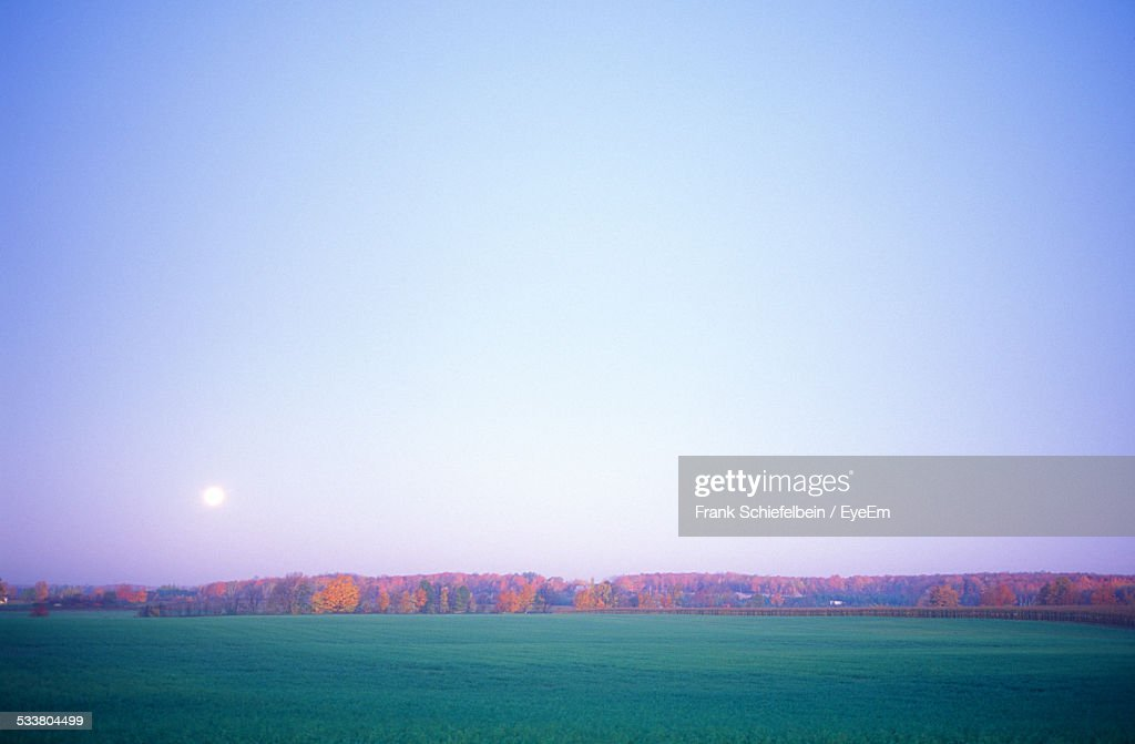 Full Moon Over Green Field : Foto stock