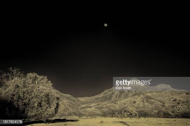full moon over santa ana peak, san benito county, california - don smith stockfoto's en -beelden