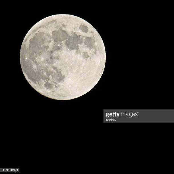 full moon - annfrau stock pictures, royalty-free photos & images