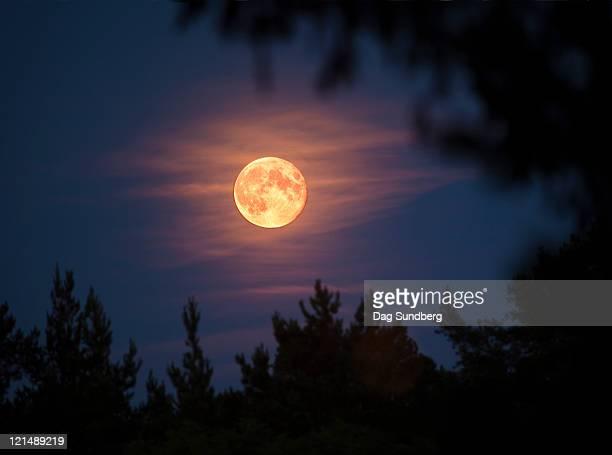 full moon - luna llena fotografías e imágenes de stock