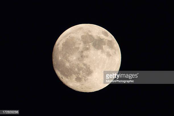 full moon - harvest moon stock pictures, royalty-free photos & images