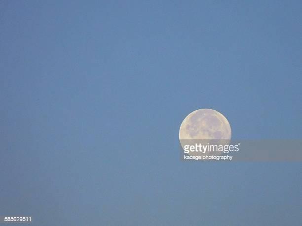 full moon - 漂白した ストックフォトと画像