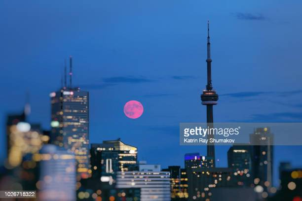 full moon rising in blue toronto - pink moon stock pictures, royalty-free photos & images