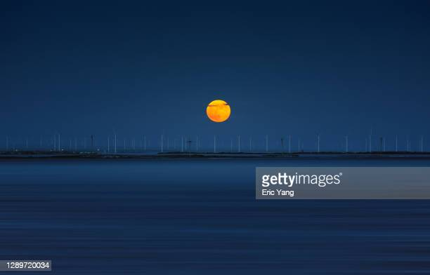 full moon rising on the horizon - horizon stock pictures, royalty-free photos & images