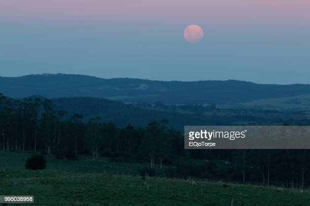 Full moon rising over a hill, Rocha department, Uruguay