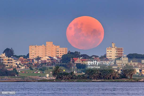full moon rising over punta gorda neighborhood, montevideo, uruguay - montevideo stock pictures, royalty-free photos & images