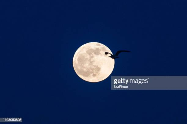 Full moon that appeared in Istanbul in the evening created a beautiful image on January 10 2020