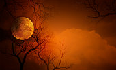Full moon with Halloween background