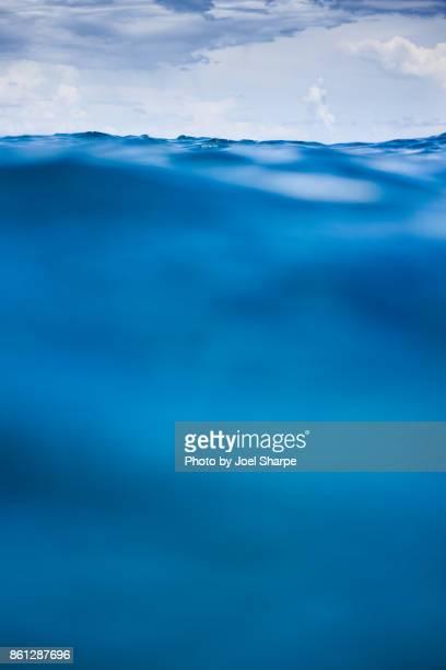 Full Ocean