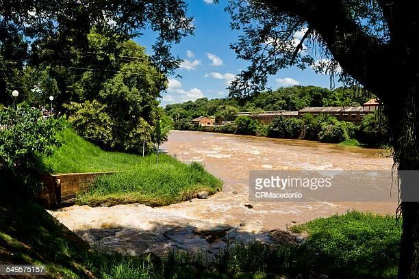 full piracicaba river - crmacedonio imagens e fotografias de stock
