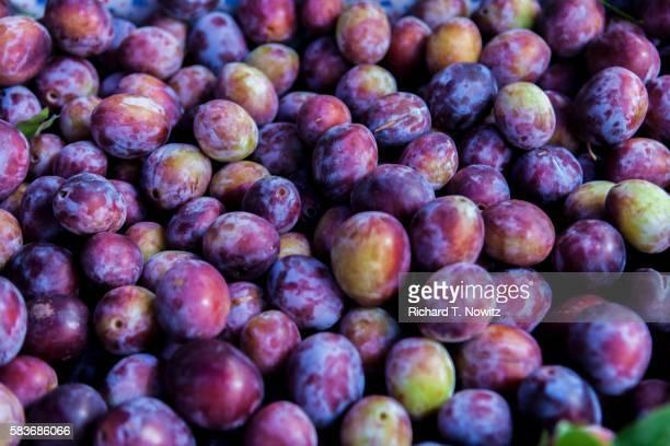 full-frame of damson plums. - ciruela fotografías e imágenes de stock