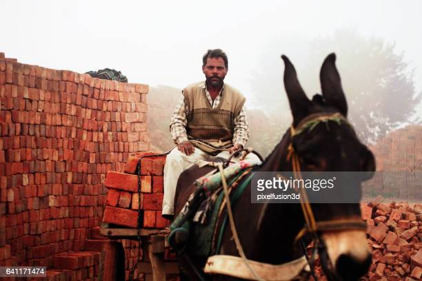 fully loaded of donkey cart of bricks - haryana stock photos and pictures