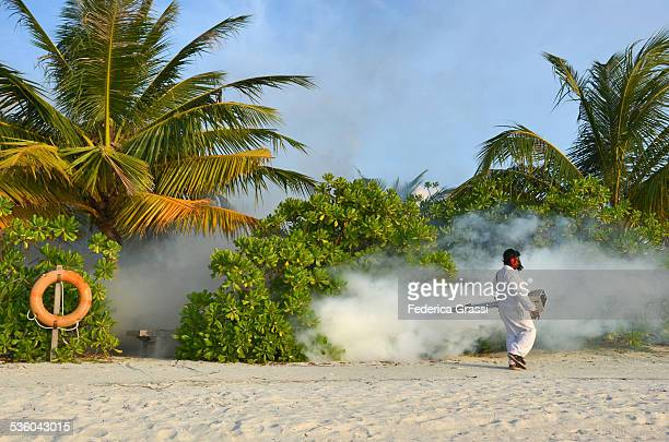 Fumigation on Maldivian Island