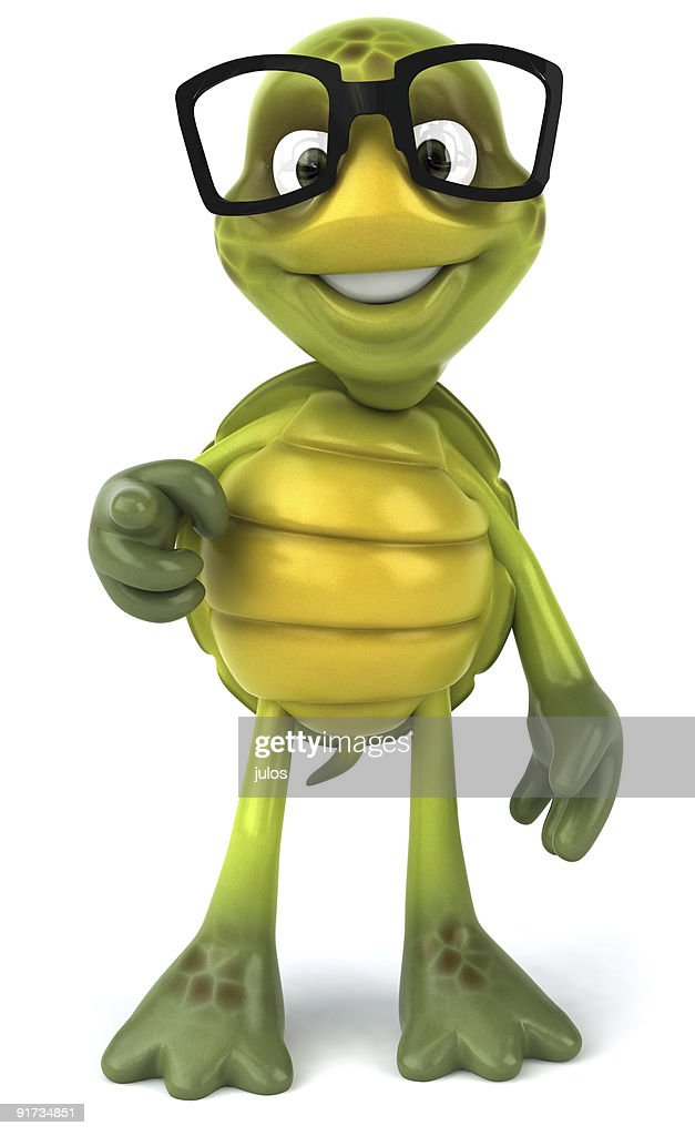 Fun Turtle With Glasses High Res Stock Photo Getty Images