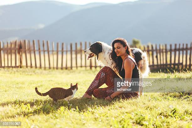 fun with cats and dogs in the sunny outdoors - cat family stock pictures, royalty-free photos & images