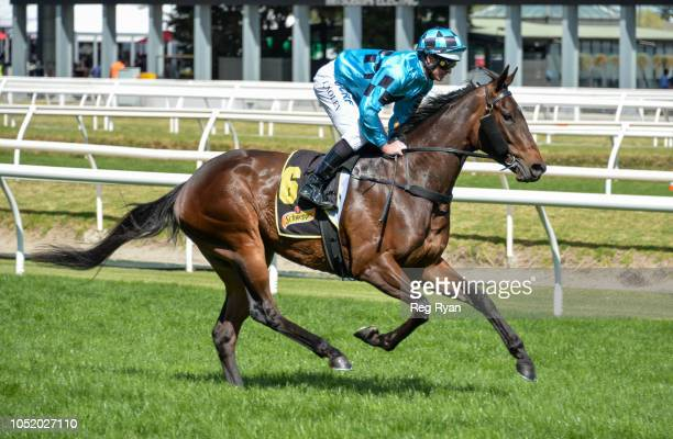 Fundamentalist ridden by Luke Nolen heads to the barrier before the Schweppes Thousand Guineas at Caulfield Racecourse on October 13 2018 in...