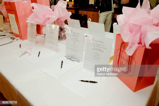 "Fundraising at Sofia's ""Hair for Health"" Annual Party at the Rodolfo Valentin Salon and Spa on October 11 2009 in New York City"