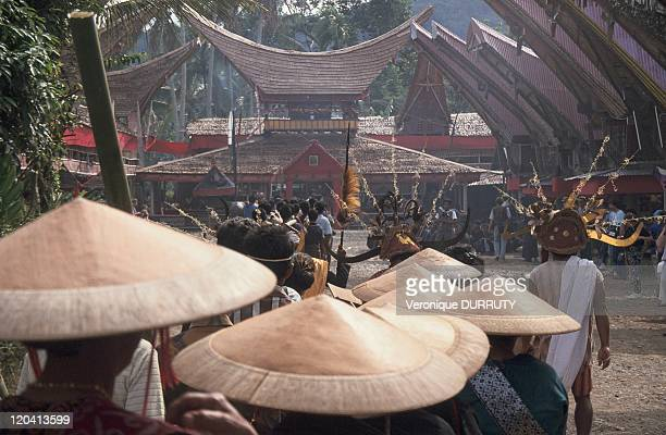 Funerary ceremony in Toraja Celebes Indonesia The area around Rantepao In Toraja funeral ceremonies last for many days Exceptional sumptuous...